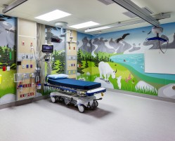 BCCH Mural Photos